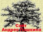 Сайт Андрея Пашкина